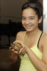 Tour-3 Toed Box Turtle