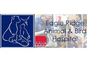 EagleRidgeAnimalandBirdHospital-Coquitlam-BC